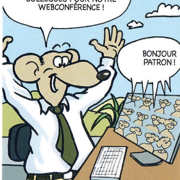 BD Webconférence